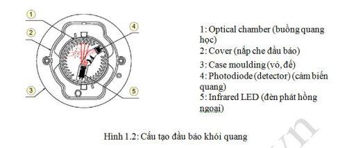 Cau Tao Dau Bao Khoi Quang